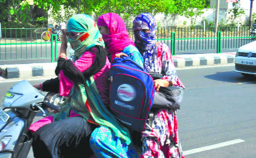 District feels the heat, sizzles at 45.8°C