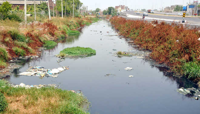 Process to clean Hudiara drain beyond sight