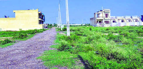 Boundaries of 85 illegal colonies earmarked, says MC chief Khaira