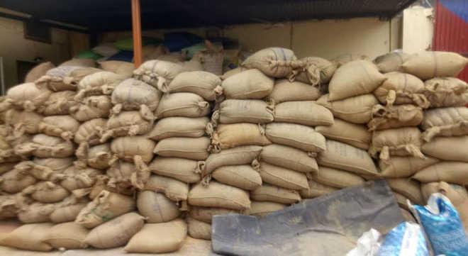 464 wheat sacks stolen from godown