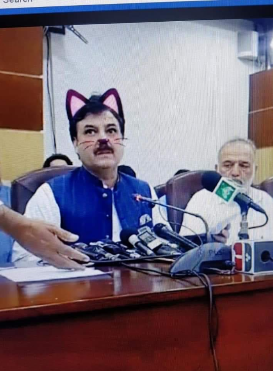 Pak minister accidentally shown with cat ears, whiskers on Facebook live streaming