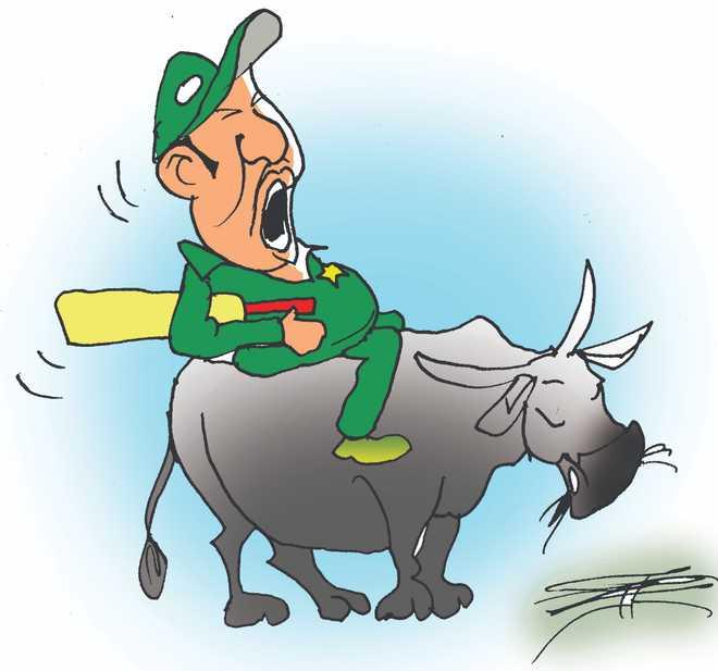 Imran Khan calls Pak cricketers 'raillu kattas', what exactly is it?