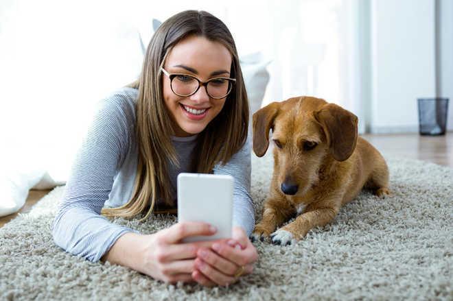 Picking pets similar to dating: Study