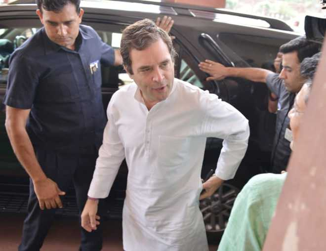 Rahul Gandhi again rejects party MPs' demand to remain Congress chief