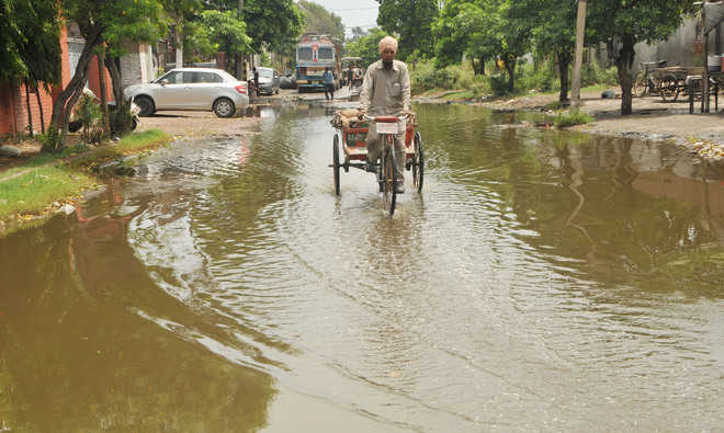 Water contamination, choked sewer: Residents fume
