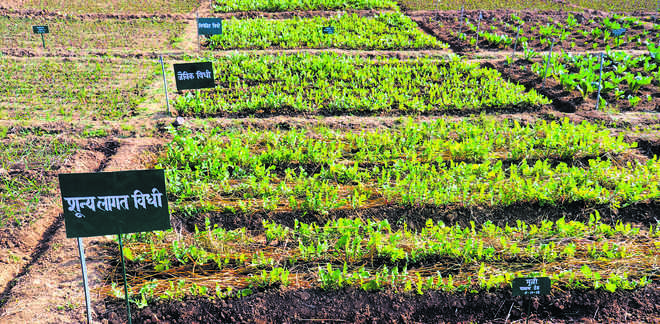 Panel constituted to study zero budget natural farming method