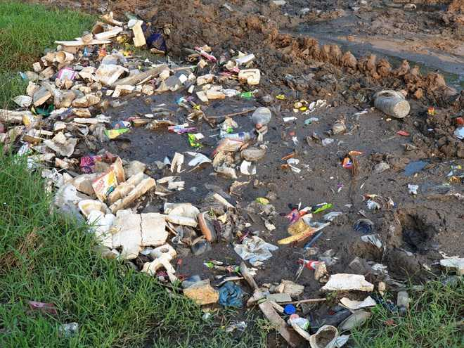 Kharar MC dumps waste in migratory birds' habitat
