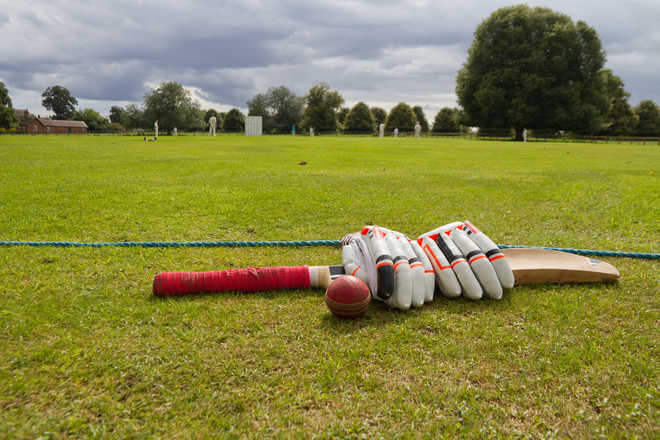 Scientists develop algorithm for affordable, high-performing cricket bats