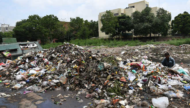 Finally, garbage pileup to be cleared by tomorrow