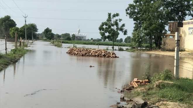 Govt blames Haryana as it struggles to tame Ghaggar