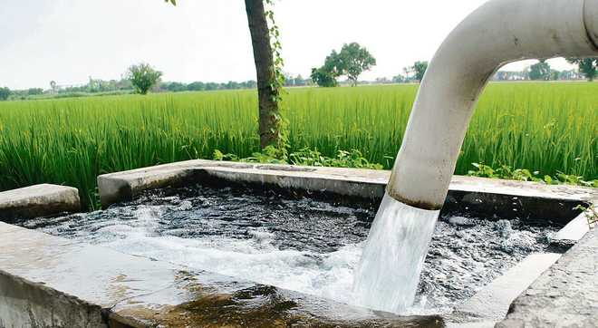 Subsidised power misuse, 100 tubewell connections to be cut : The ...