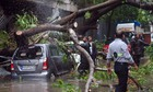 A fire brigade official cuts a tree which fell due to heavy monsoon rain, at Ghatkopar in Mumbai, Tuesday, July 2, 2019. — PTI