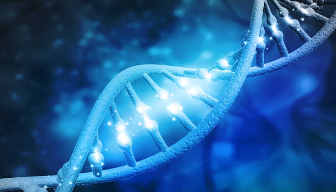 Multiple genes to blame for risk of asthma, eczema