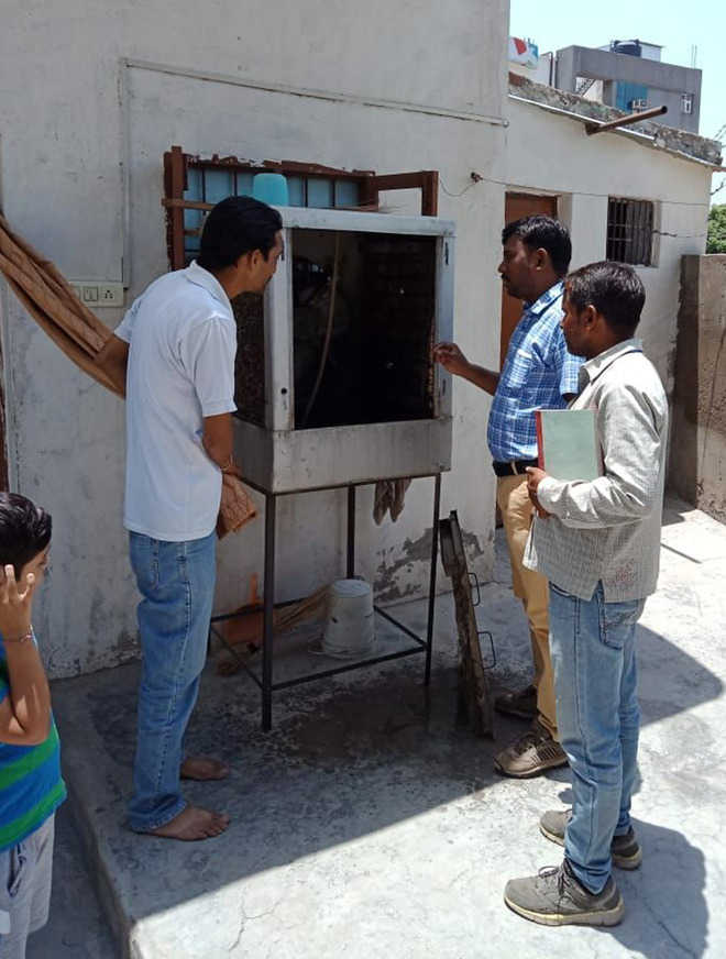 863 people get notices after dengue larvae found at houses