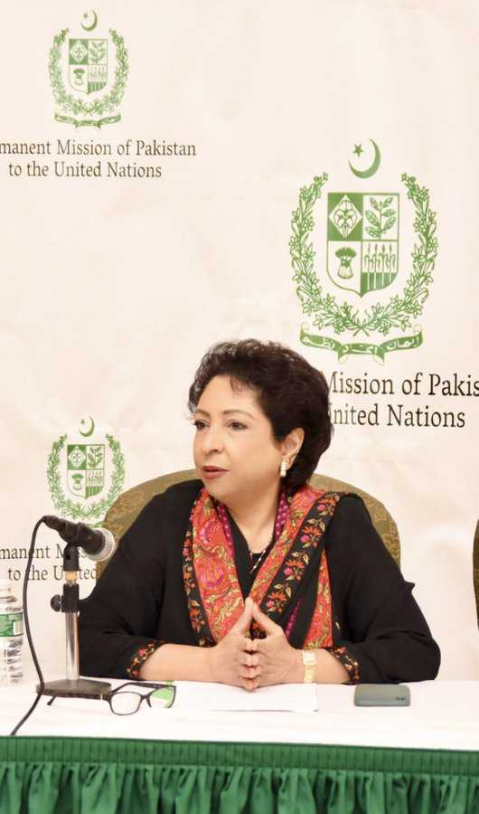 'You are a thief, don't deserve to represent Pak': Maleeha Lodhi heckled in US