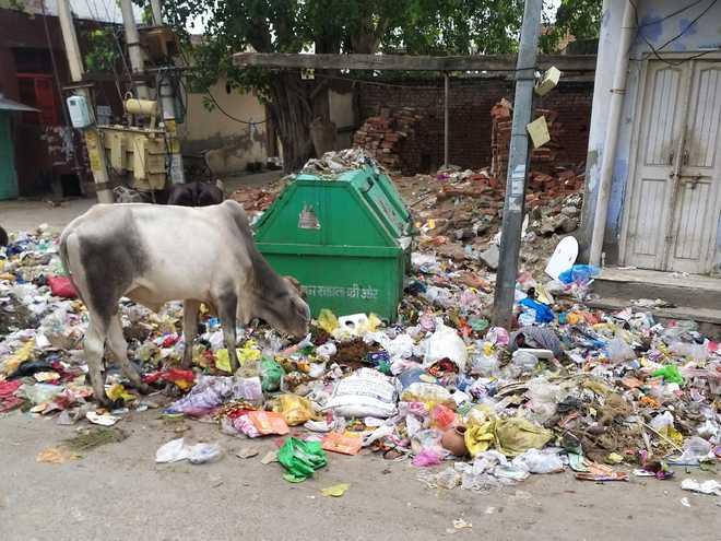 Poor civic amenities, but BJP still ahead