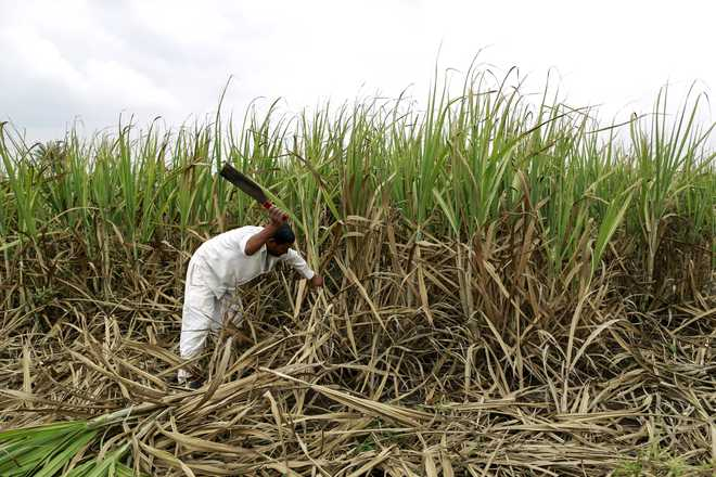 Rs 2500 cr investments by Maharashtra sugar mills after ethanol push
