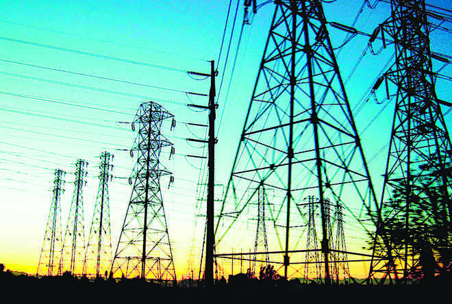 Rs 1,000 cr losses per year owing to power theft