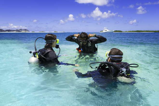 Dive deep into adventure