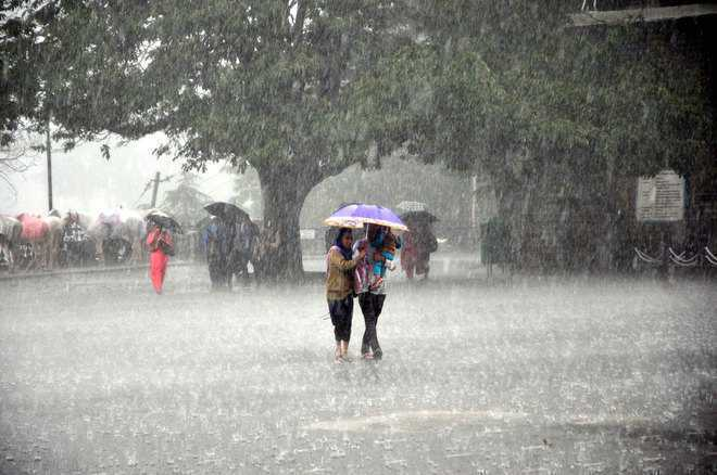 MP: Over 16,000 shifted after heavy rain in Mandsaur, Neemuch