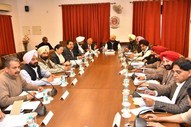 Punjab to have special IT cadre for effective implementation of e-governance programme