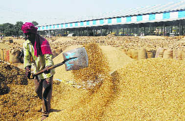 Scheme to recover Rs 2K cr from millers okayed