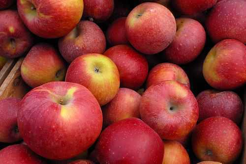 Trump admn urged to ask India to reduce duty on US apples