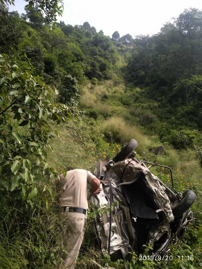 2 killed, 2 injured in Mandi road accident