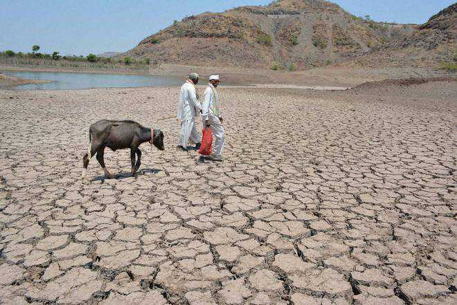 Water shortages in Marathwada even as surplus rain in other parts of Maharashtra
