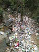 Himachal govt to buy back single-use plastic at Rs 75 per kg